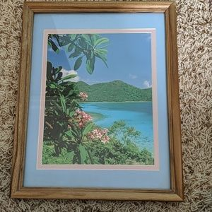Other - Tropical Paradise Picture & Frame